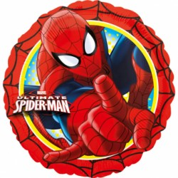 Spider Man 18''  Anagram