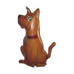Pies Brązowy 14''
