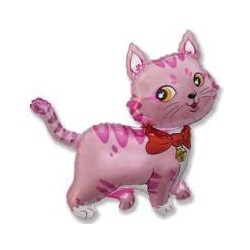 Kot Róż 14''