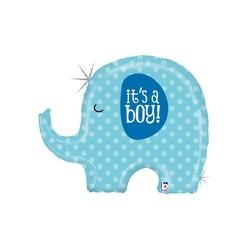 It's A Boy Elephant  INT 35585H-P