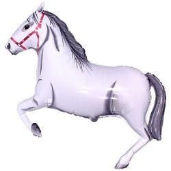 Koń Biały