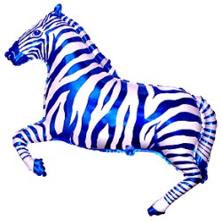 Zebra Niebieska